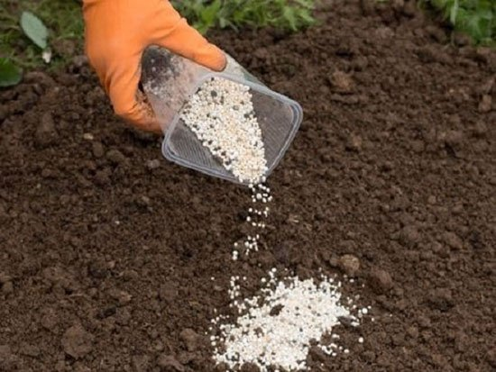 Внесение в почву удобрений