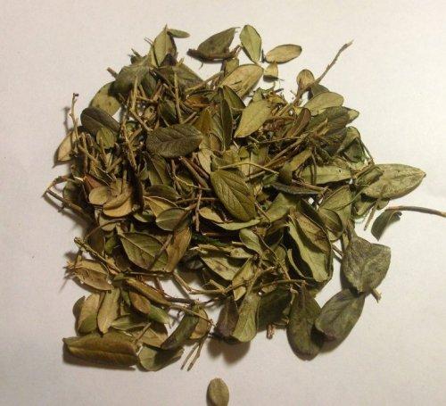 Брусничный лист для чая
