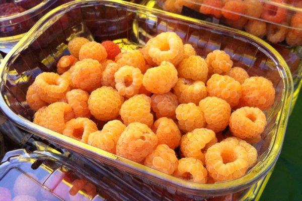 Ягоды желтой малины