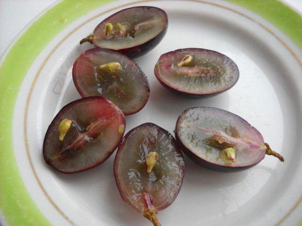 Ягоды винограда на разрезе