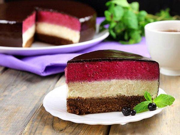 Муссовый бисквитный торт с черникой