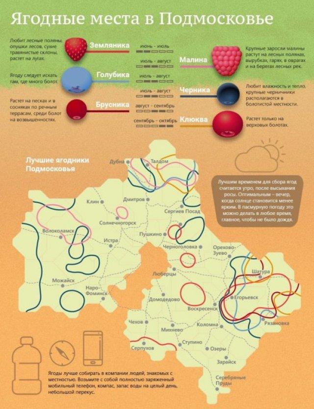 Карта ягодных мест в Подмосковье
