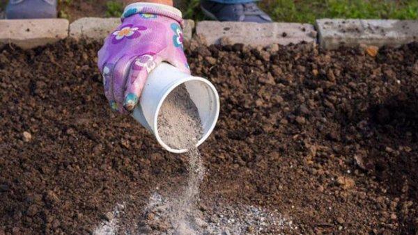 Удобрение грунта