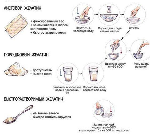 Правила работы с желатином