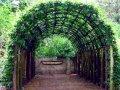 Арка под виноград
